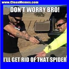 Funny Spider Meme Pictures To - get rid of that spider clean memes the best the most online