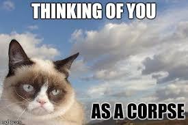 Thinking Cat Meme - cat memes thinking of u memes best of the funny meme