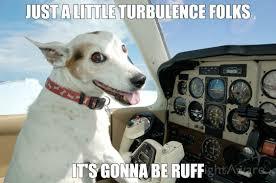 Dog Jokes Meme - pilot dog rebrn com