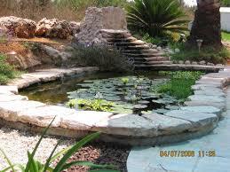 Diy Backyard Pond by 30 Best Koi Pond Diy Images On Pinterest Pond Ideas Backyard