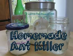 Natural Ant Killer For Kitchen by A Contented Common Life Homemade Recipe Ant Killer