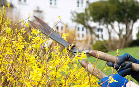 Preparing Your Home For Spring Spring Home Maintenance Travelers Insurance