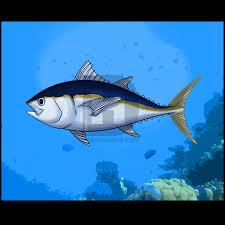 how to draw a tuna step by step by darkonator drawinghub