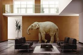 Feng Shui 7 Ways To Use Elephant In Your Home Decor