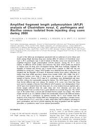 microbiology society journals amplified fragment length