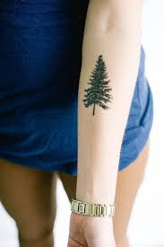 attractive pine tree on left forearm