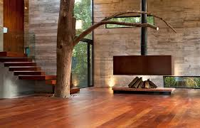 home interior design wood a tree in a living room corallo house by paz arquitectura