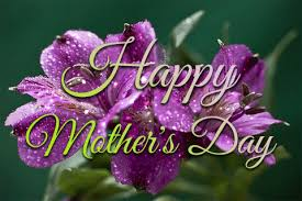 mothers day gifs purple flowers on mothers day pictures photos and images for