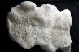 White Sheepskin Rugs Sheepskin Rugs For Sale Clover Park Cornwall