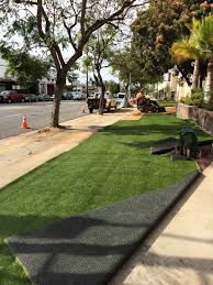 Cheapest Cost Of Living In California by 8 Options For Replacing Your Lawn Along With Their Pros And Cons