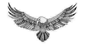 Tattoo Eagle Tumblr | image result for simple eagle tattoo tumblr kewl pinterest