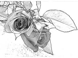 simple art drawing ideas pencil drawing of rose flower pencil