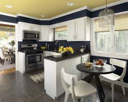 Kitchen Paint Ideas White Cabinets Kitchen Color Schemes With White Cabinets Home Decor Gallery