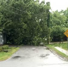 storm brings heavy tree damage hail u2013 loudoun now