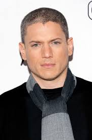 Just Meme - wentworth miller just shut down a hurtful body shaming meme with a