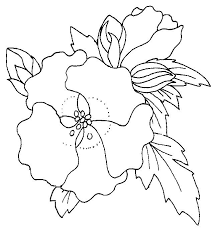 poppy coloring 17 coloring pages