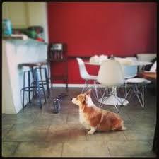 Hit The Floor Network - alaqua animal refuge alaqua animal refuge freeport florida