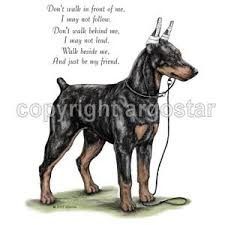 doberman pinscher 2 t shirts sweatshirts clip prints