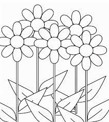 flores colorear margaritas flores colorear