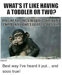 Toddler Memes - what s it like having a toddler or two imagine raising a heavily
