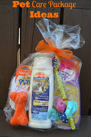 new care package pet care package ideas for dogs and cats family focus