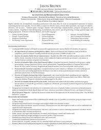 Junior Accountant Sample Resume by Sample Resume For An Accountant Free Resumes Tips
