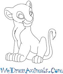 draw nala lion king