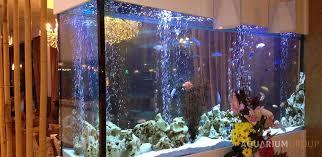 Aquarium Room Divider Aquarium Room Divider Aquariumgroup Uk
