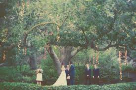 cheap wedding ceremony ceremony a tree bow inspiration