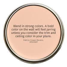 100 best hint color images on pinterest painting tips interior