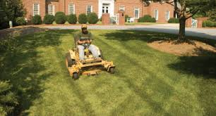 Landscape Management Services by Southern Exposure Landscape Management Greensboro Nc