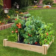 Home Depot Home Design App by Home Depot Garden Design Garden Design Ideas