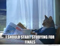 Finals Meme - 1 percent cat on finals meme weknowmemes