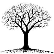 silhouette of tree less branches sewing