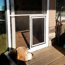 Sliding Glass Patio Storm Doors Sliding Glass Patio Dog Doors In Denver And The Front Range The