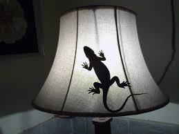 Ceramic Light Fixture Free Images White Window Glass Animal Ceramic L Reptile