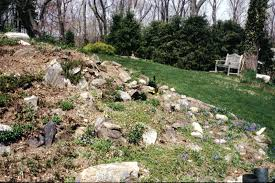 building a rock garden on slope best idea garden