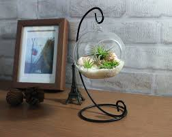 Plants For Home Decor Inspiration Terrariums To Accent Home With Nature Trends4us Com