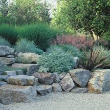 Backyard Rock Garden by Garden And Lawn Natural Rock Garden Ideas Rock Garden Ideas