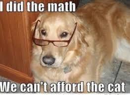 Birthday Dog Meme - dog meme funny and cute dog memes puppy meme