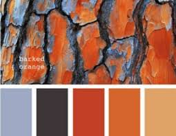 blue u0026 burnt orange living room colors homedecor where to go