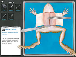 frog dissection 3 99 step by step instructions enable users to