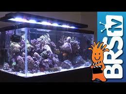 led reef aquarium lighting aquarium lighting ep3 led lighting bulk reef supply