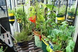 Urban Veggie Garden - starting an urban vegetable garden interior u0026 exterior doors