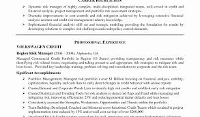 Sample Resume Of Business Analyst by Business Analyst Project Manager Sample Resume Free Download