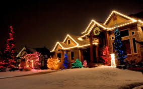 outdoor christmas lights for bushes houston christmas lights installation articles christmas lights
