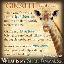 Giraffe Floor L Giraffe Symbolism Meaning Spirit Totem Power Animal