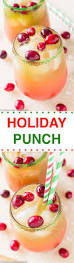 best 25 christmas punch ideas on pinterest christmas party