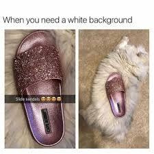 Meme Generator White Background - dopl3r com memes when you need a white background slide sandals