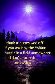 am i blue alice walker thesis best 25 the color purple quotes ideas on pinterest the color